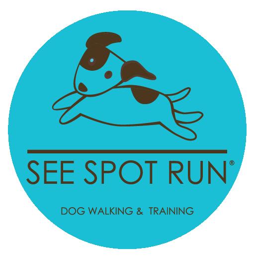 See Spot Run | Dog Walking and Training